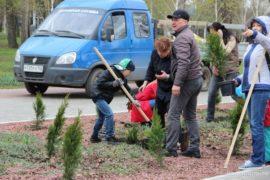 В инициативном бюджетировании участвует почти 500 тысяч жителей Башкирии
