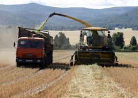 Азат Янгиров: Агропредприятия будущего обязаны быть высокопроизводительными
