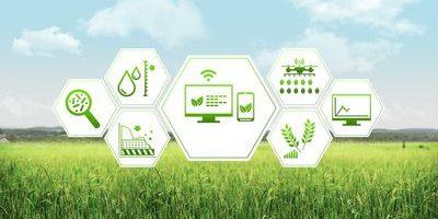 Ученые ИСИ РБ: «Будущее — за цифровой аграрной экономикой и кооперацией. Надо определить выигрышные для региона секторы»