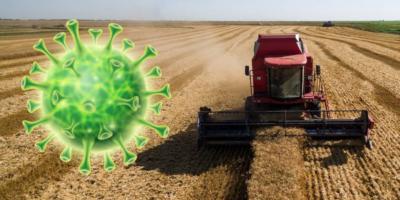 Засуха и коронавирус: что ждет башкирских аграриев в ближайшее время?