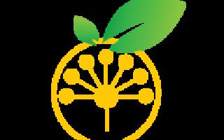 Сибайский филиал ИСИ РБ станет основой развития науки в Зауралье