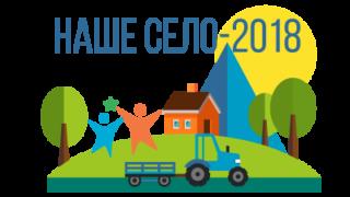 Подведены итоги муниципального проекта инициативного бюджетирования «Наше село-2018»
