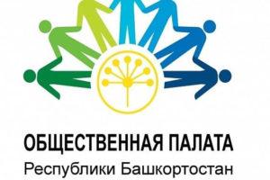 НКО Башкортостана выработали предложения по семи направлениям развития